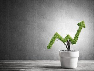 8 прибыльных бизнес-идей, требующих небольших вложений