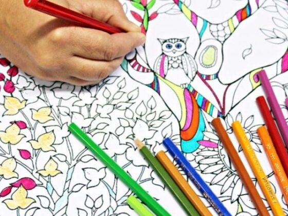 Как начать бизнес производство раскрасок для взрослых.